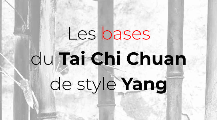 les bases du tai chi chuan de style yang