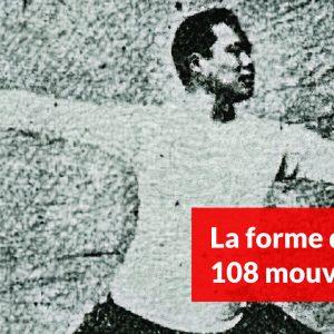 La forme des 108 mouvements