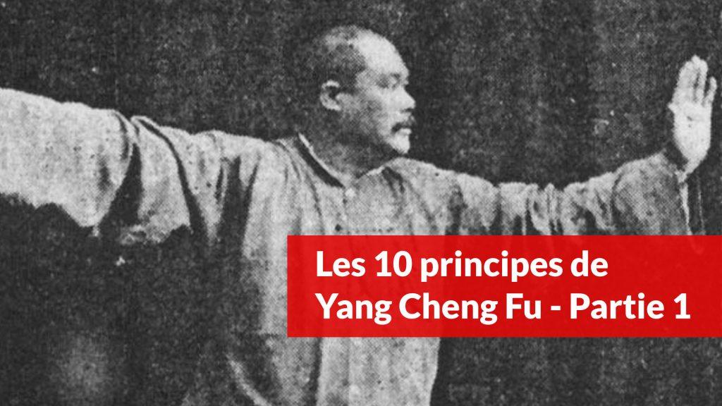 les 10 principes de yang cheng fu