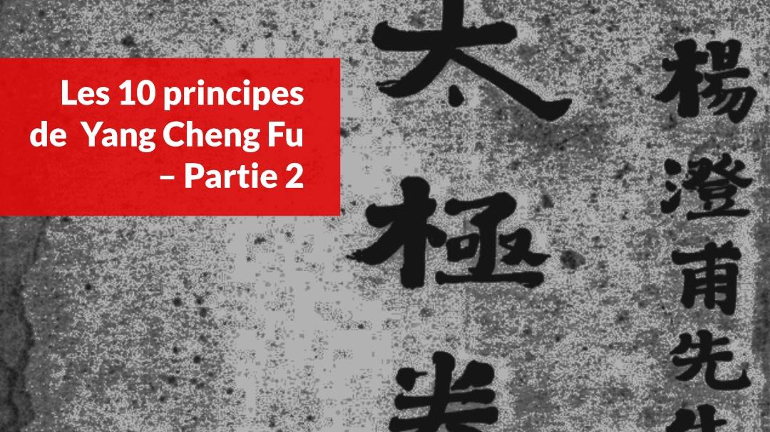 les-10-principes-de-yang-cheng-fu-partie-2