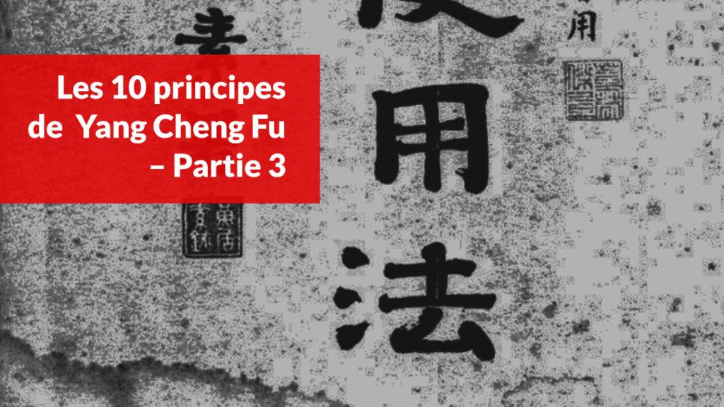 les 10 principes de yang cheng fu partie 3