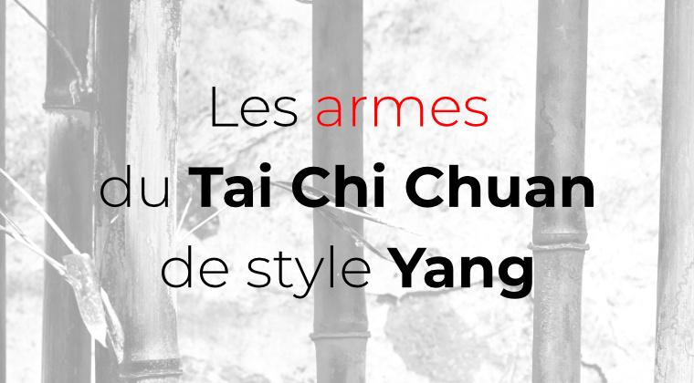 formation sur les armes du tai chi chuan de style yang